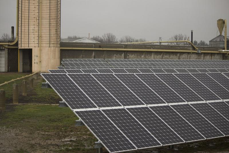 A solar array at Wible Lumber in northeast Indiana (Nick Janzen/IPBS)