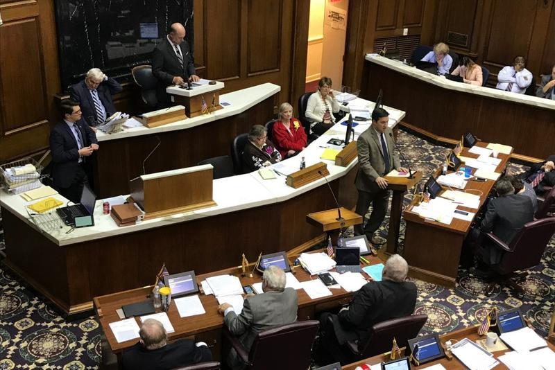 Lawmakers debated legislation well into Friday night on the House floor. (Brandon Smith/IPB News)