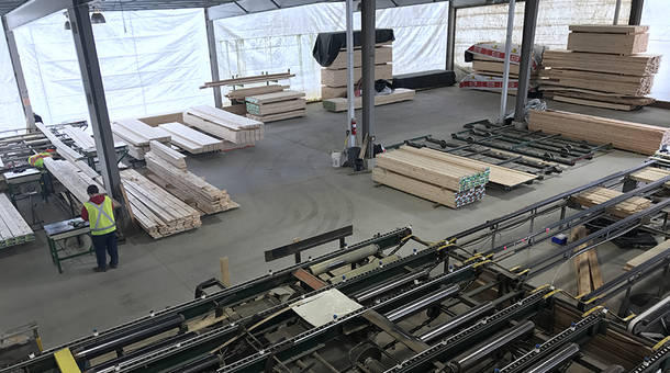 timber%20resize.jpg
