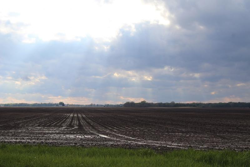 A tilled field in West Central Indiana. (Annie Ropeik/IPB file photo)