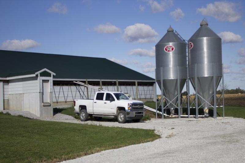 A confined feeding operation in Hancock County (Nick Janzen/IPB News)