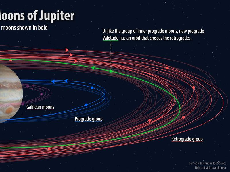 """An illustration shows how the orbits of the 12 newly discovered moons (bold) fit into the known orbital groupings of the Jovian moons (not bold). The """"oddball"""" with the proposed name Valetudo orbits in the prograde, but crosses the orbits of the planet's"""