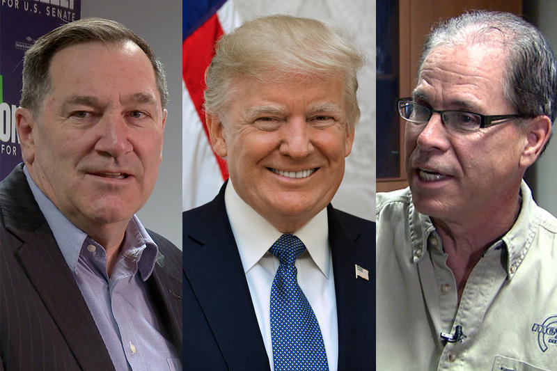 Both Sen. Joe Donnelly (D-Ind.), left, and Republican challenge Mike Braun, right, launched ads that feature President Donald Trump, center, ahead of Trump's visit to Evansville. (Photos courtesy of Lauren Chapman/IPB News, White House, and WFIU/WTIU)