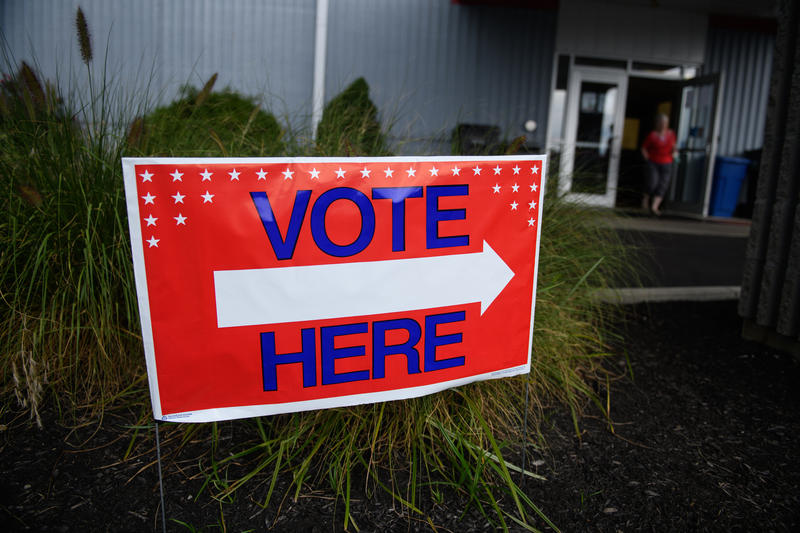Voter Purges May Mean Eligible Voters Are Excluded From Midterms