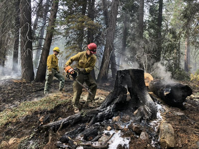 As a prescribed burn makes its way through a forest crews follow it making sure hazard trees are cut down. It's a preventative measure taken to ensure the public's safety.