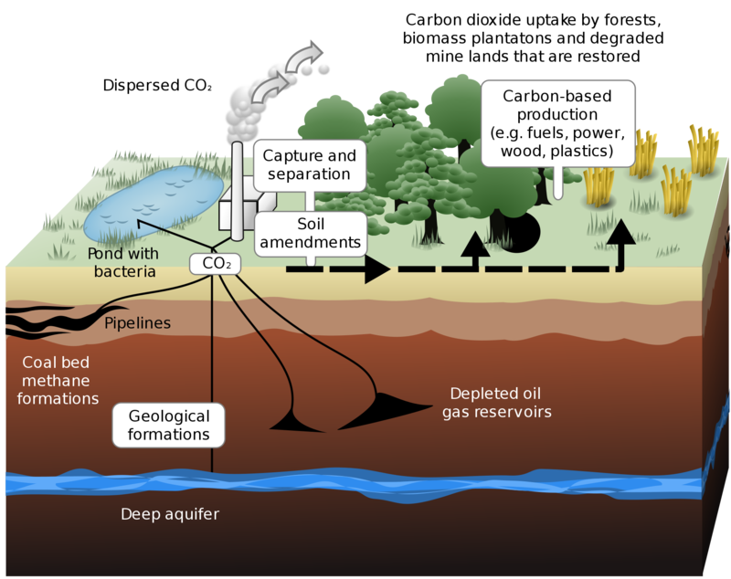 Ways carbon dioxide can be sequestered on land and underground. (LeJean Hardin and Jamie Payne/Wikimedia Commons)