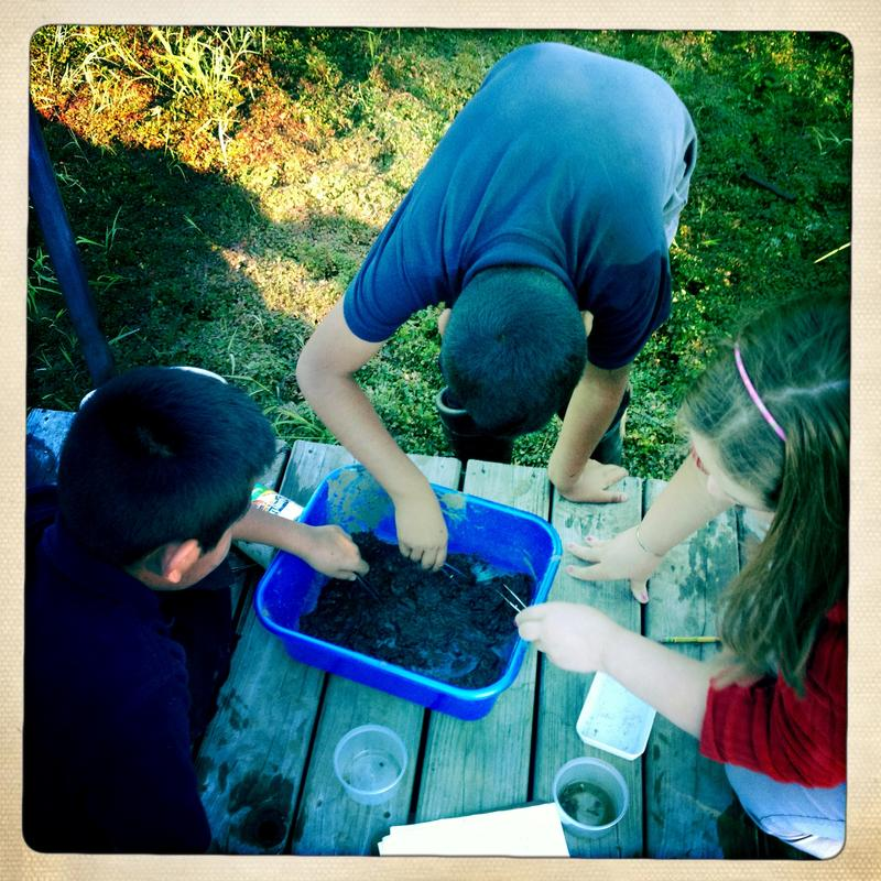 Sixth graders identify soil dredged from a pond in back of the school.