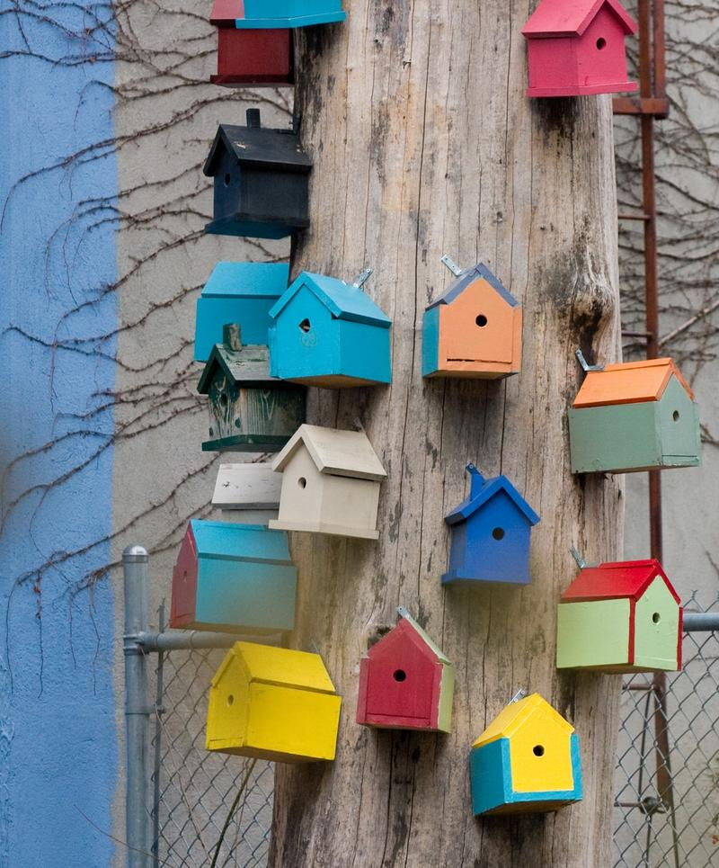 Concentrated poverty state of opportunity for Bird house styles