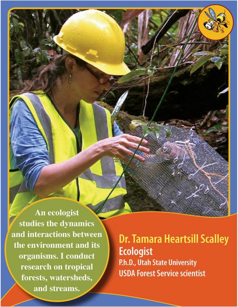 USU alum Tamara Heartsill Scalley has her very own scientist trading card in the US Forest Service series.