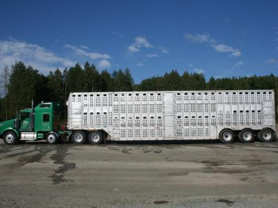 Citizens in Cache Valley can expect to see livestock transport vehicles pulled over during the drill.