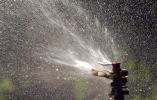 Sprinklers showering an urban lawn