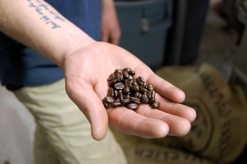 A Caffe Ibis roaster holds freshly roasted beans.