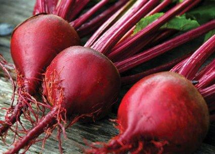 Photo of Red Ace Beets