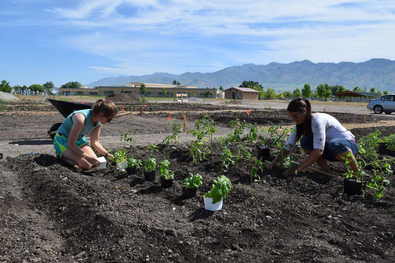 Cache County Extension Horticulture Educator Helen Muntz (right) and Extension Horticulture Intern Betsey York plant some seeds in a salsa garden near Bridger Park.