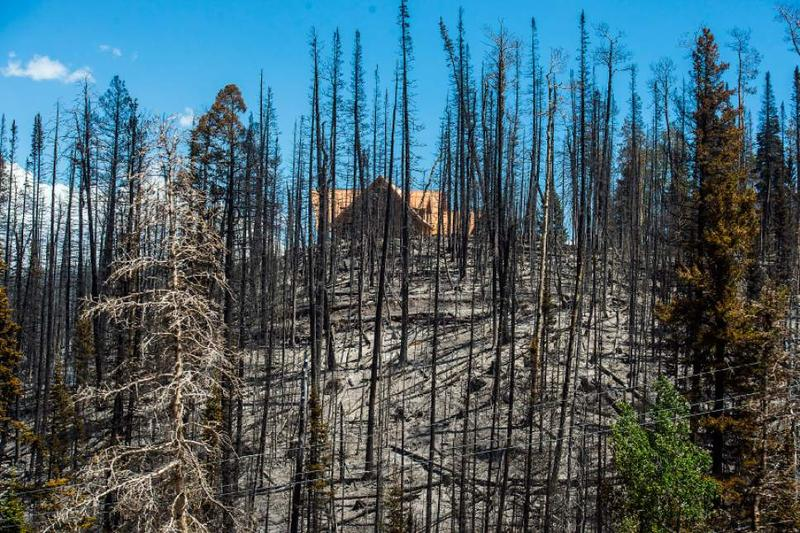 Results of the Brian Head fire