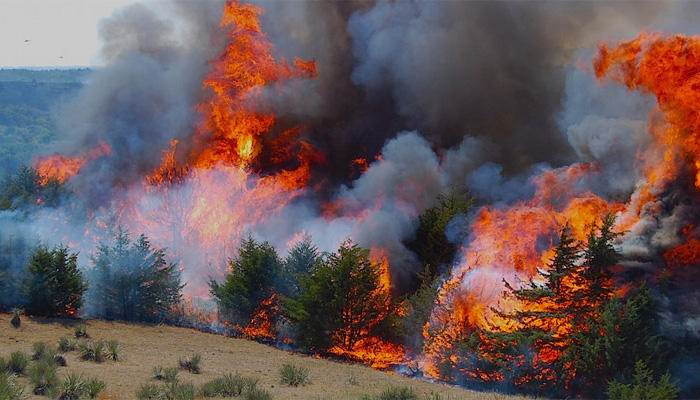 Utah wildfire