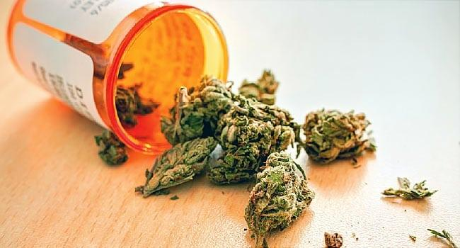 Utahns will vote on medical marijuana this November.