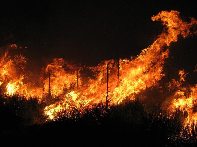 Wildfire blazes near Strawberry Reservoir in Utah.