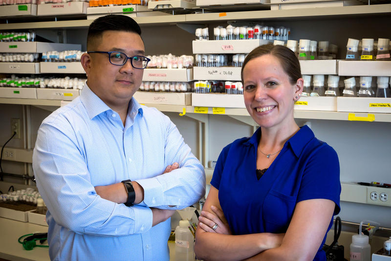 Clement Chow, pictured with research assistant Rebecca Palu, is a geneticist at U of U Health who studies the genetic roots of diseases like retinitis pigmentosa.