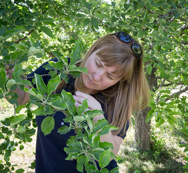 Lori Spears is a professional practice assistant professor in the Biology Department at Utah State University.