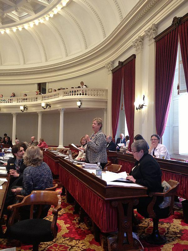 State Rep. Leigh Dakin introduces the resolution