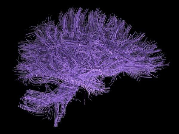 Addicting drugs 'hijack' the reward pathways in the brain.