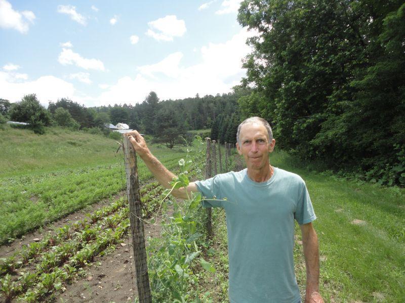 Joey Klein on his Plainfield vegetable farm