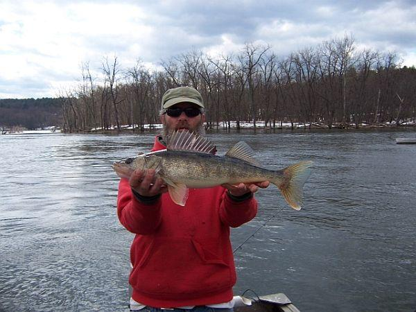An example of a Connecticut River walleye