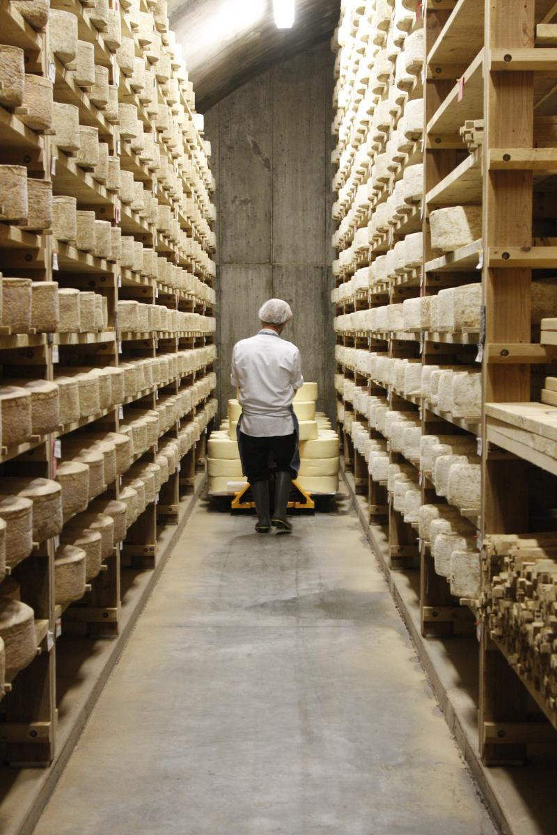 A worker shelves cheese in one of the seven rooms at the Jasper Hill cheese cellars