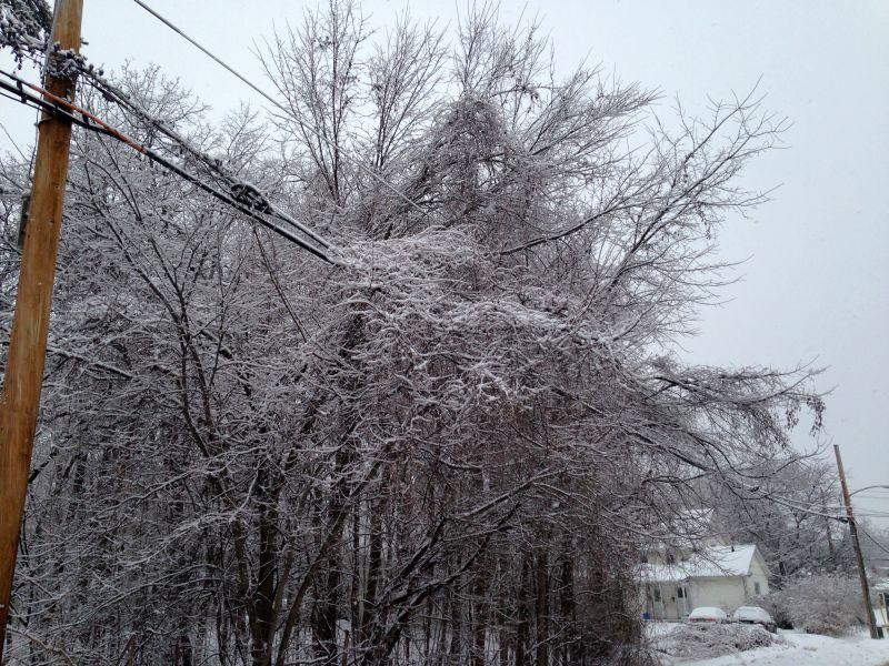 Ice brought trees on power lines throughout northern Vermont