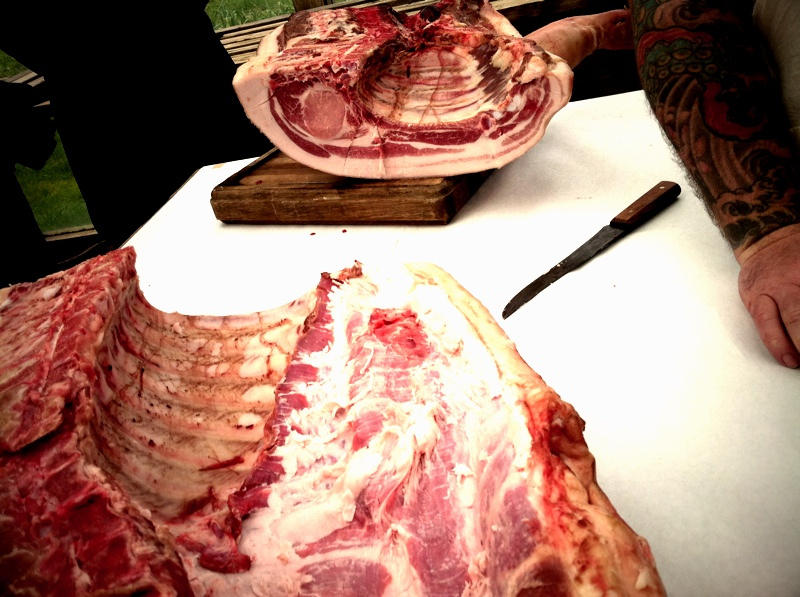 The back ribs of a pig are on display here, mid-way through a pig butchery class.