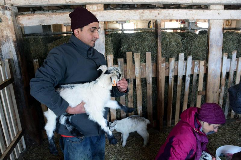 Chuda Dhaurali, originally from Bhutan, was the first farmer to join the Vermont Goat Collaborative. Now in its second year, the project is growing.