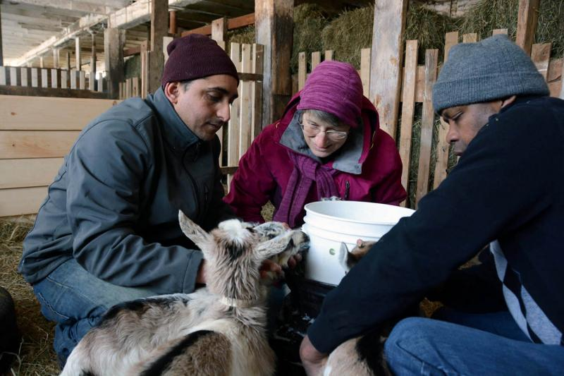 Project Manager Karen Freudenberger, center, helps Dhaurali and Rwayitare work through a feeding for 57 goats. Freudenberger says she saw the opportunity to replace goat meat imported from Australia and New Zealand with a local product.