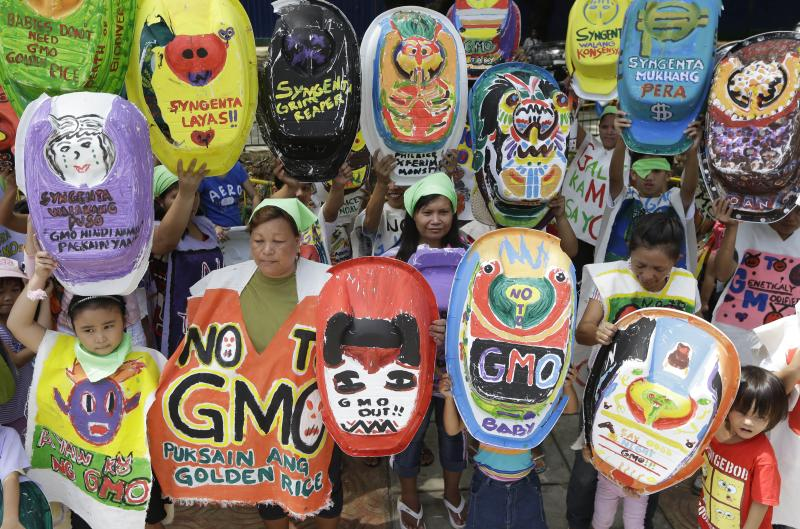 "A protest on World Environment Day, Wednesday June 5, 2013, in Quezon, Philippines. A coalition called ""Green Moms"" advocates organic foods to show their opposition to a genetically modified rice variety known as ""Golden Rice."""
