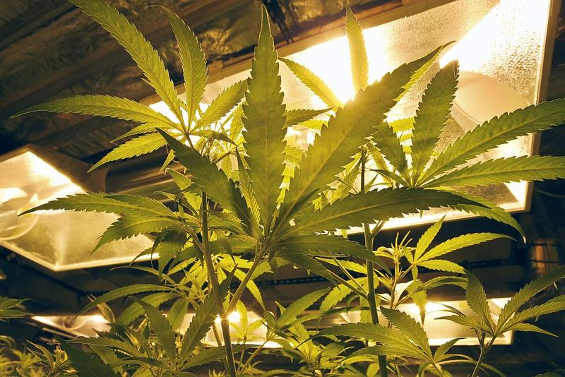 Senate lawmakers say they have a plan that splits the difference between House and Senate versions of the legalization bill, but House lawmakers are wary.