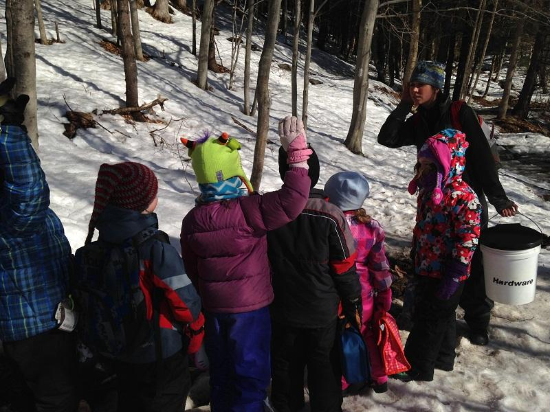 "Kindergarteners from Ottauquechee School in Quechee trudge up hill to outdoor ""classoom."""