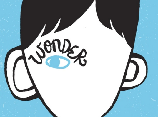 """Wonder,"" by R.J. Palacio, tells the story of a young boy with severe facial deformities."