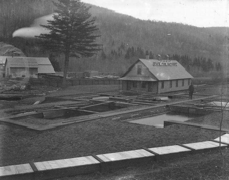The Roxbury Fish Hatchery circa early 1900s.