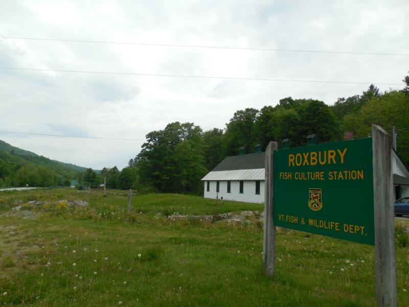 The Roxbury Hatchery is still much as it was in the days following Irene.