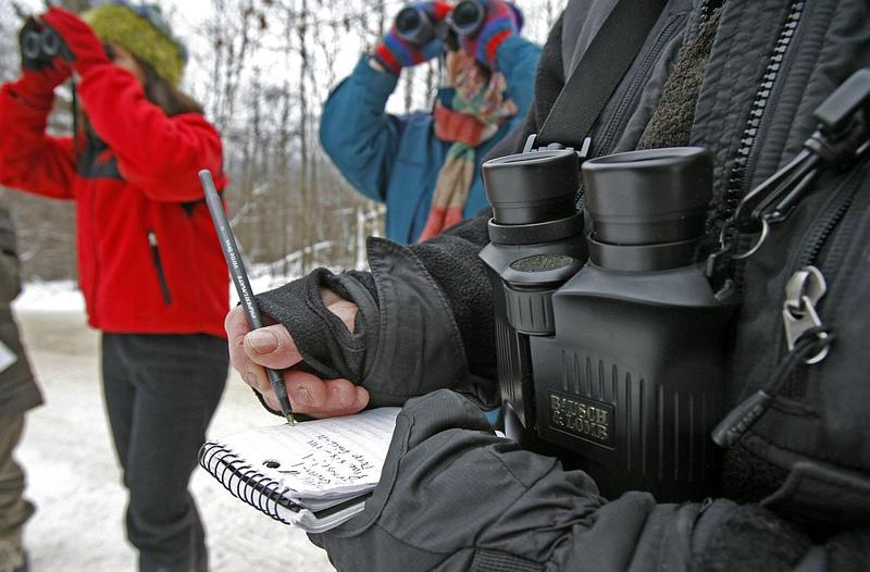Alison Wagner records the bird count in Fayston, as she takes part in The National Audubon Society's Christmas Bird Count in 2008. The annual event is one of the longest-running citizen science data collection projects in the country.
