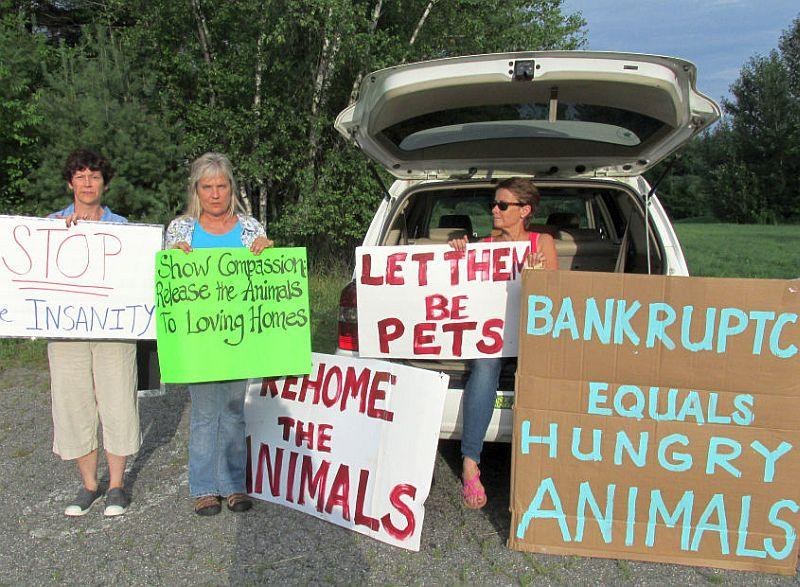 Santa's Land protesters hope to find new homes for the animals remaining at the park.