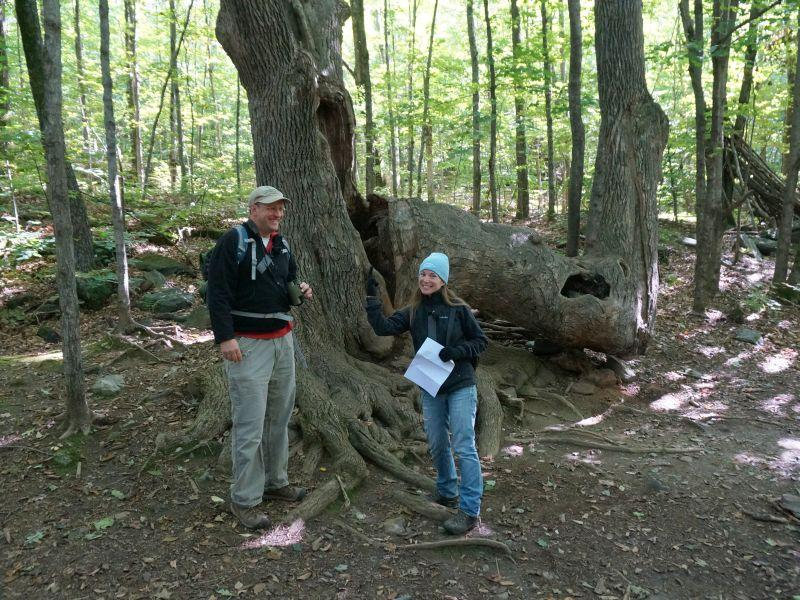 Kent McFarland and Sara Zahendra check out an unusual tree formation and the housing it provides.