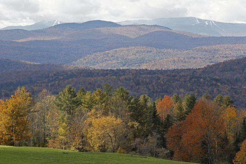 Vermont has nearly 4.6 million acres of forest, most of which is privately owned.