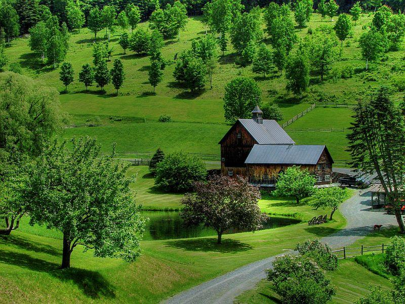 Sleepy Hollow Farm is located between Woodstock and South Pomfret.