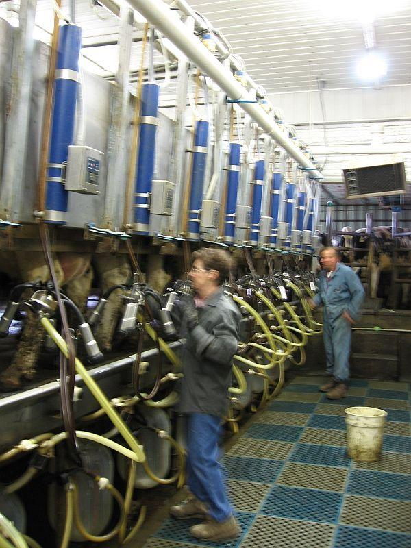 Vermont now has less than 900 dairy farms.