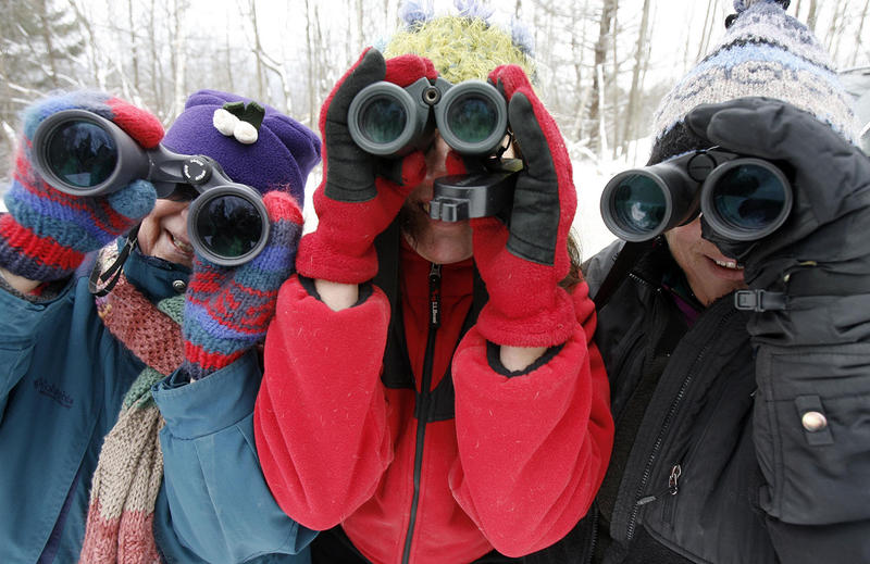 Bird counters look through their binoculars in Fayston in 2008. This year's 115th annual Christmas Bird Count runs December 14 through January 5.