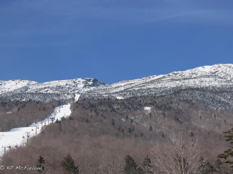 Biologists Sara Zahendra and Kent McFarland rode the gondola at Stowe Mountain Resort to track the different tree species from Vermont's highest peak, Mount Mansfield.