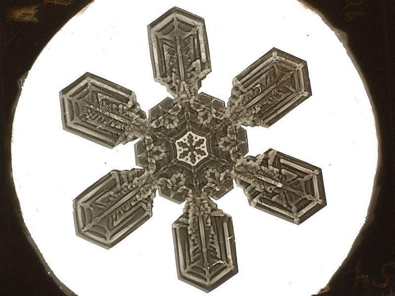 Snowflake Bentley photographed over 5,000 snowflakes over 46 years.