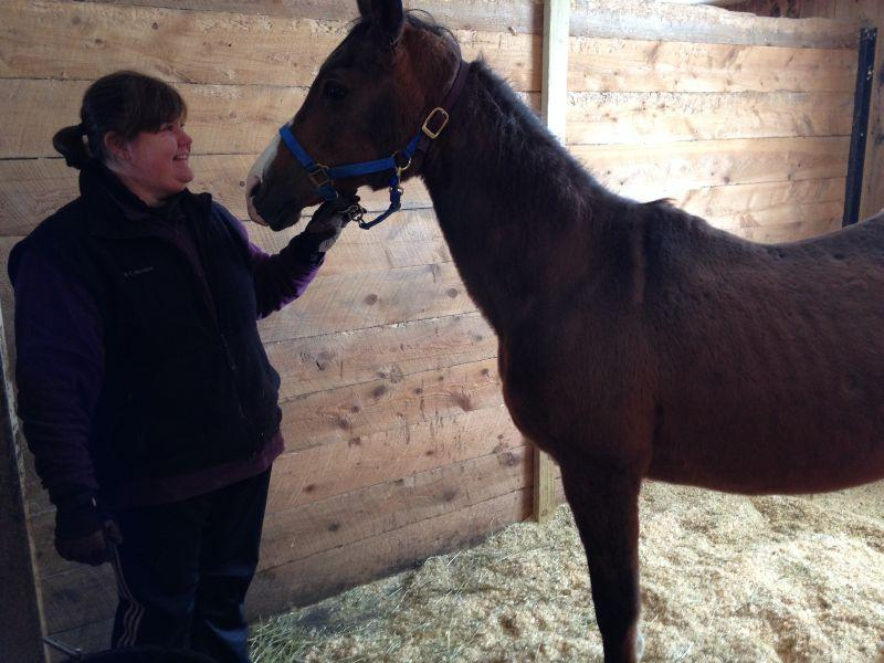 Heidi Edmunds, executive director of the Lucy Mackenzie Human Society, stands with one of the horses rescued from a South Woodstock farm last November. The horses will need to be re-located to new foster homes by the end of March.