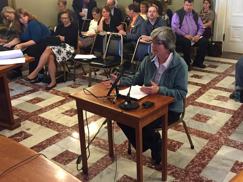 Millie Armstrong, president-elect of the Vermont Veterinary Medical Association, tells Senate lawmakers that a proposed sales tax on services could create new financial barriers to health care for pets.